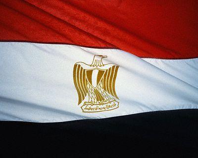 يستنكر استيراد علم مصر من إسرائيل